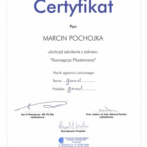 plaatsman-certyficate